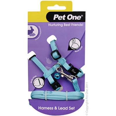 Picture of Small Animal Harness Aqua